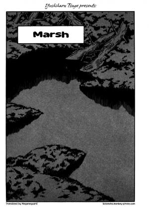 tsuge-marsh01